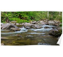 Rocky Valley Creek - Alpine National Park Victoria Poster
