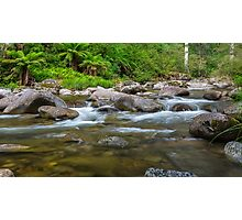 Rocky Valley Creek - Alpine National Park Victoria Photographic Print
