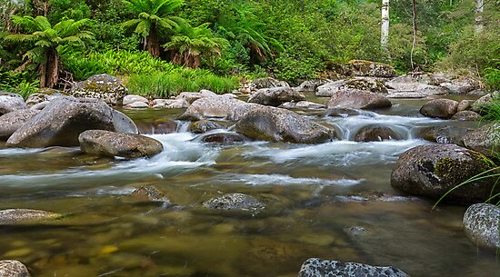 Rocky Valley Creek - Alpine National Park Victoria by Mark  Lucey