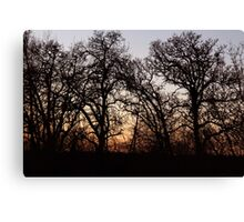 Drive By Silhouettes Canvas Print