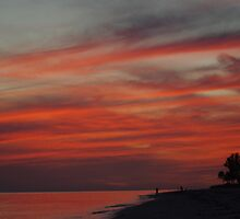 Sunset on the Island by Karen Checca