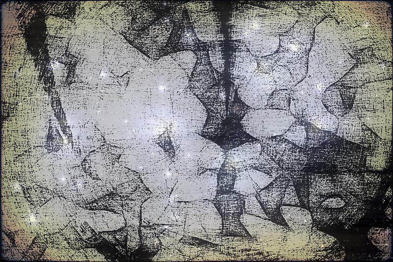 Stardust by Benedikt Amrhein
