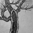 Old Apple Tree by coppertrees