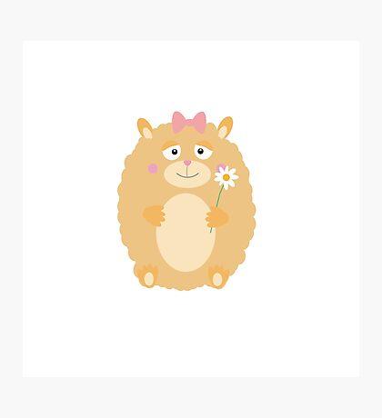 Fluffy Hamster Photographic Print