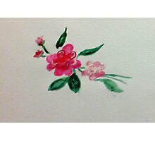Red roses, watercolor Photographic Print