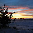 Pastel Plains by Greg Belfrage