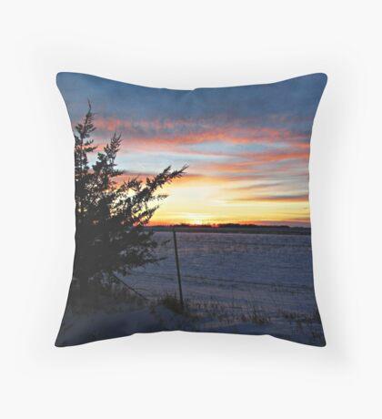 Pastel Plains Throw Pillow