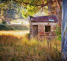 Pickers Hut, Woodstock, Tasmania by Chris Cobern