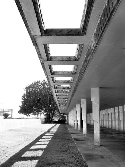 Florida Southern College, Lakeland, Florida, Frank Lloyd Wright by Crystal Clyburn