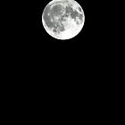 Full Moon - January 27th, 2013 by © Sophie W. Smith