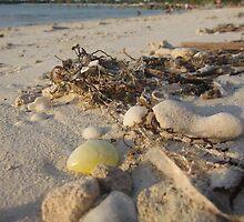 Sandy Retreat by Aaron Paul Stanley