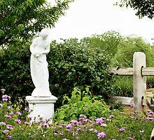 In the garden  by Laura  McGregor