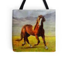 Freedom by Pierre Blanchard Tote Bag