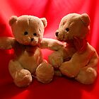 Twin Teddies by AnnDixon