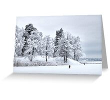 Frosted freedom Greeting Card