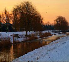Last Winterday..so far.. by Janone