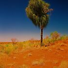 Desert Tree by AndyFeltonPix