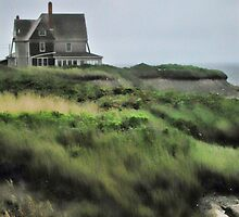 Cliff House by Val Dunn