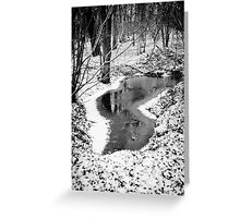 Pond in Snow Greeting Card