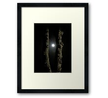 Moonlight: Framed Framed Print