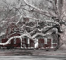 Betsy Williams Cottage by Val Dunn
