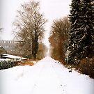 White Still by silentstead