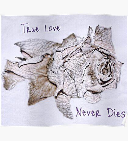 True Love Never Dies Poster
