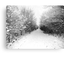 Snow. Canvas Print