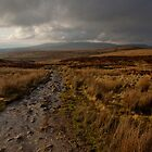 Pathway to the storm clouds by cptnumpty