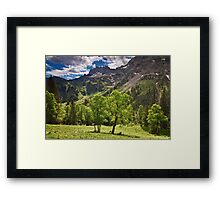 Alpine Light Framed Print