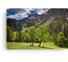 Alpine Light Canvas Print