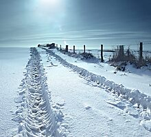 Cold Midday Sun. by Kit347