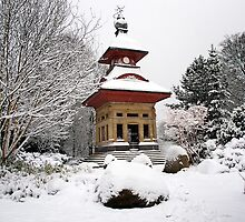 Observatory in The Snow 1 by Paul Barnett