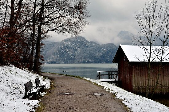 Winter at Lake Kochelsee, Germany by Daidalos