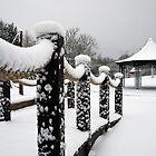 Snow Play Today by Paul Barnett