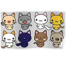 Cute Kitty Cats Poster