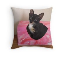 Our kitten Casino Throw Pillow
