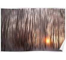 Winter Sunset Impressions Poster
