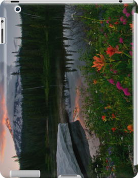 Mount Rainier Summer by Dan Mihai