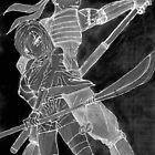 Dark Samurai and Ninja  by Andy Seabrook
