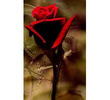 """""""Valentine..."""" Photographic Print"""