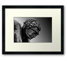 Newton Framed Print