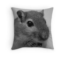 Gerbil Close-up Throw Pillow