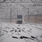 Snow train coming by Javimage