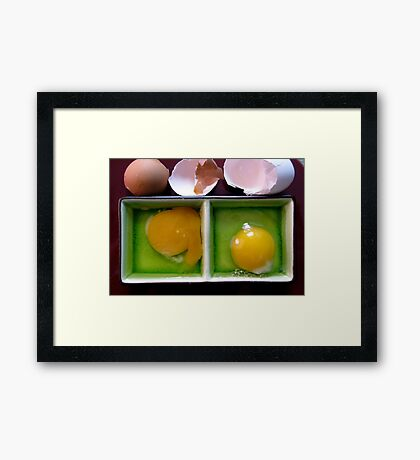 and now a little egg education . . . . Framed Print