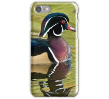 Male Wood Duck iPhone Case/Skin