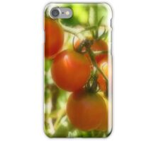 Red Cherry Tomatoes On The Vine iPhone Case/Skin