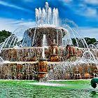 Buckingham Fountain Chicago Illinois  by Scott Wood
