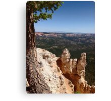King of the Castle Canvas Print