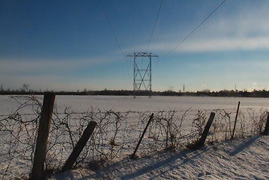 Power lines - Fitzroy Harbour, Ontario by Josef Pittner